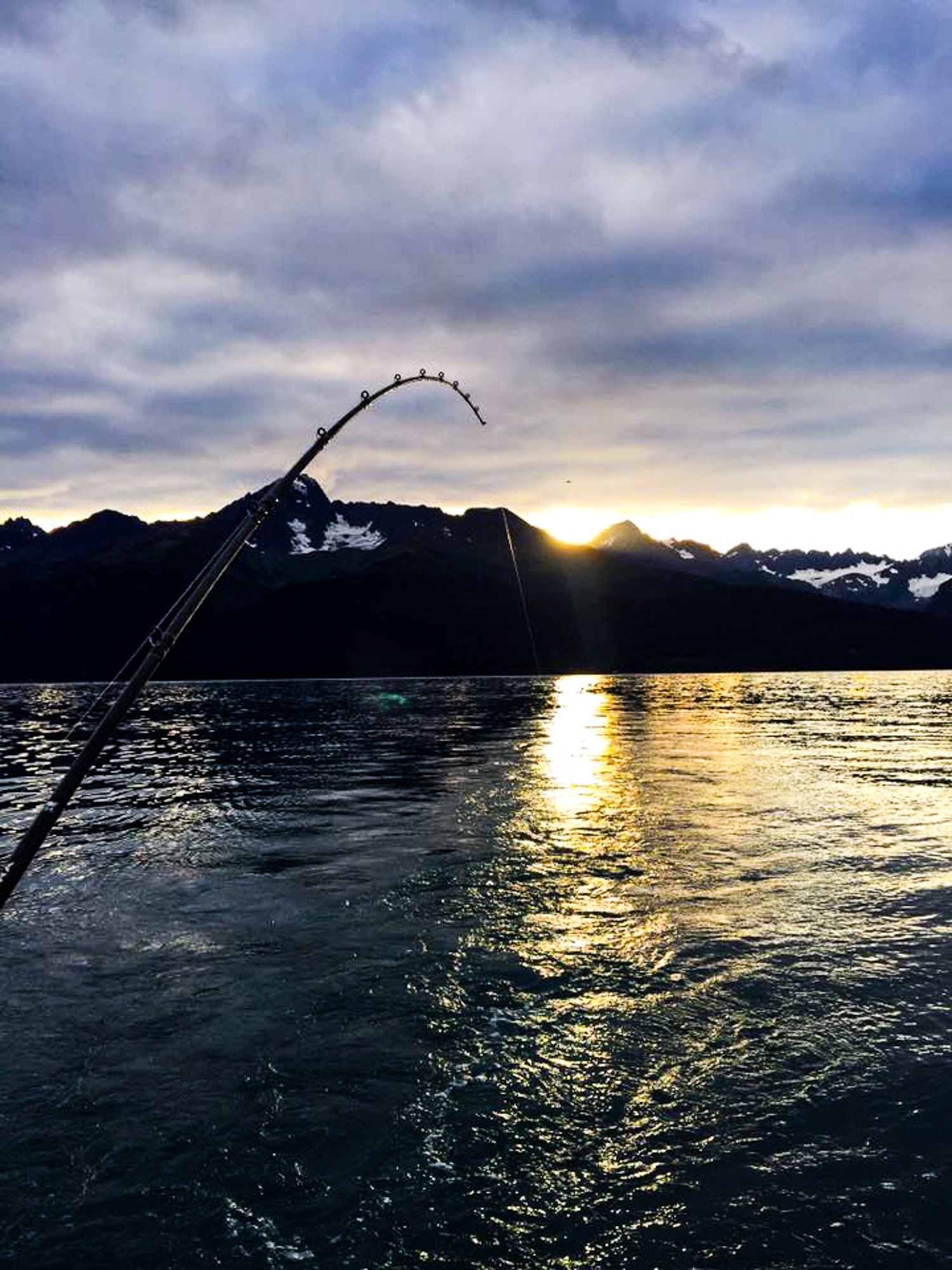 Salmon Fishing in the Bay