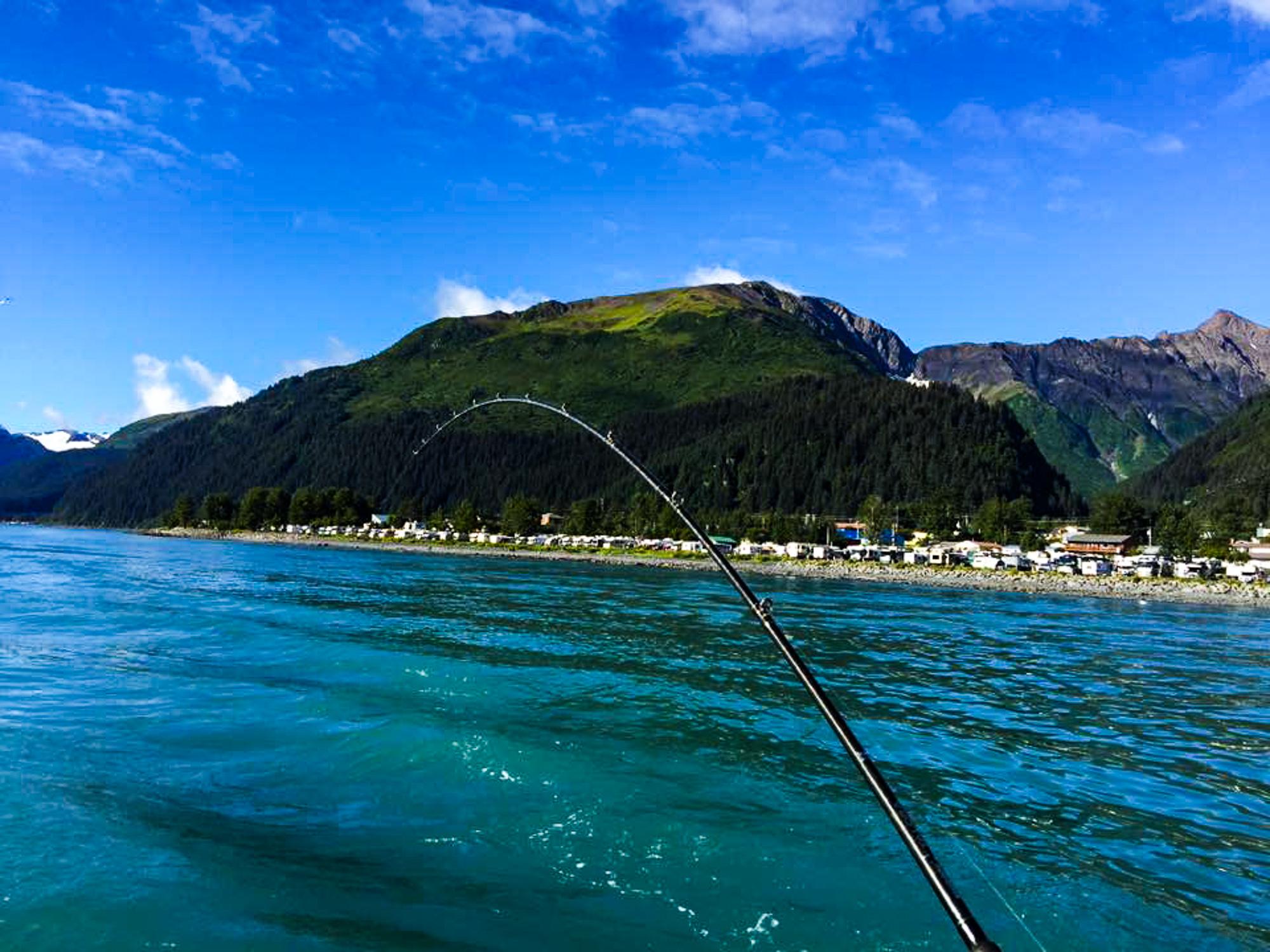 Half Day Saltwater Salmon Charter