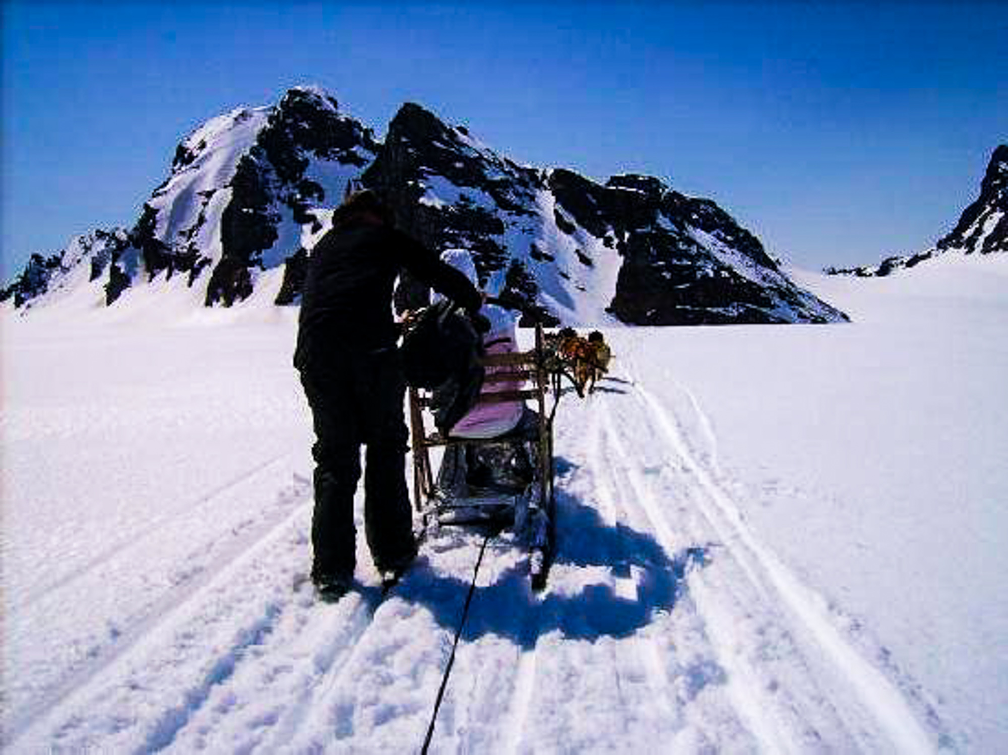Helicopter Tour and Dogsledding